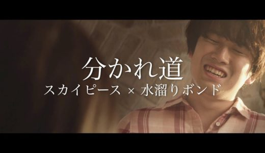 【MV】分かれ道【スカイピース × 水溜りボンド】