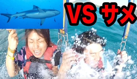 【危険】サメがいる海に落ちましたwww