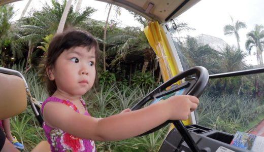 大丈夫><らんちゃんが運転!?沖縄パイナップルパークで大はしゃぎ!