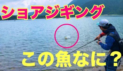 【ショアジギ】メタルジグで意外すぎる魚を釣ってみた