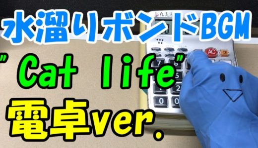 電卓で水溜りボンドBGM 【Cat life 】演奏してみた!