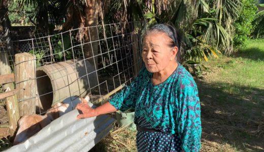 となりのトトロを全く知らないおばーがする、カンタのおばあちゃんのモノマネ