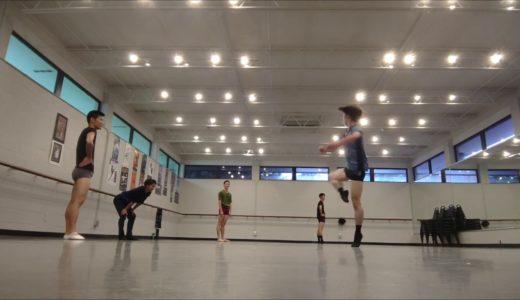 プロバレエダンサーの日常。