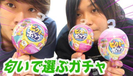 【1個2000円】カプセルの穴から匂う謎のガチャが面白すぎた!!