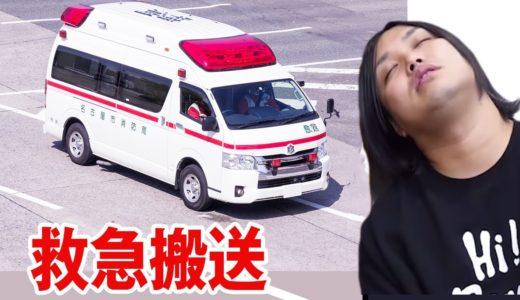 トミー、救急車で運ばれる。。。