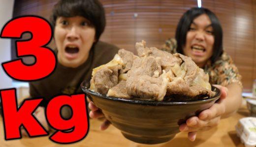 【大食い】高級牛丼100万円分食べまくってみたwww